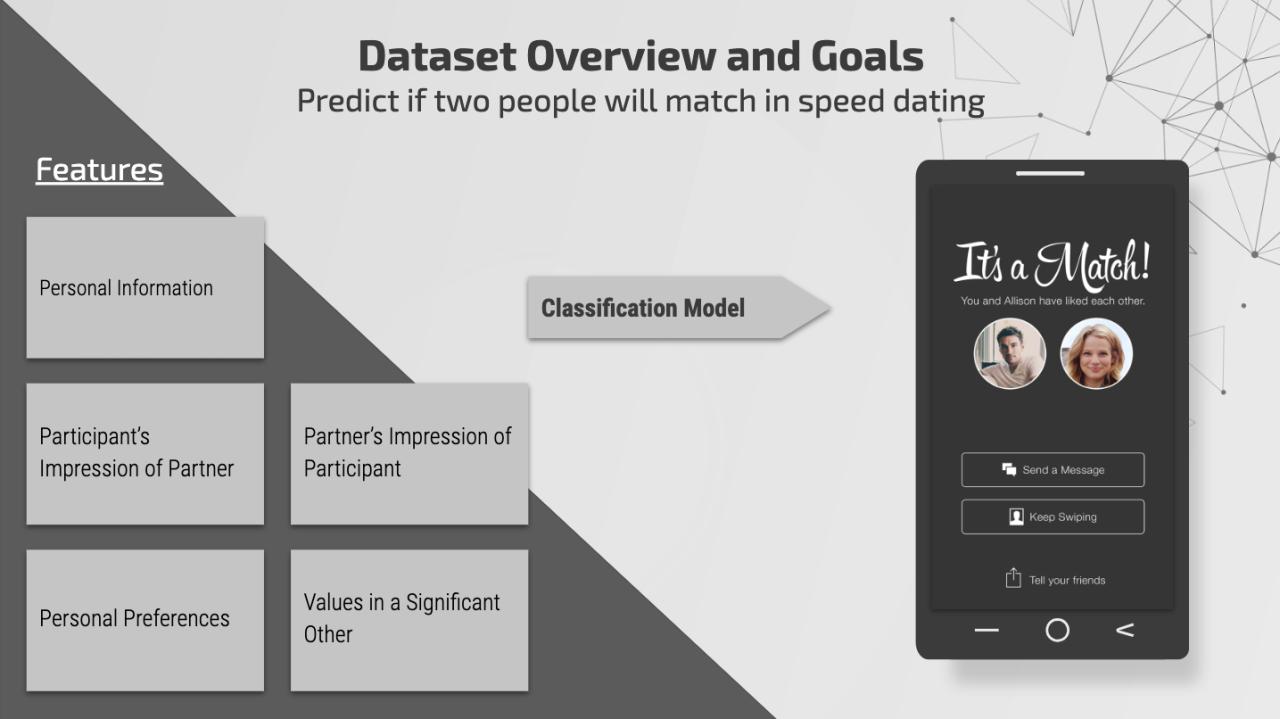 dataset overview