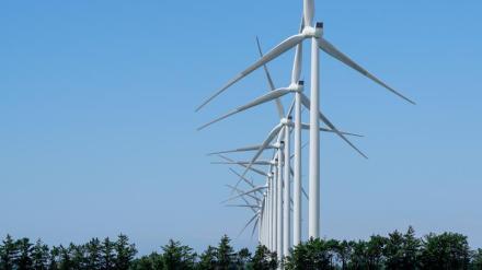 2020 bliver nyt rekordår for standsede vindmøller i Danmark1