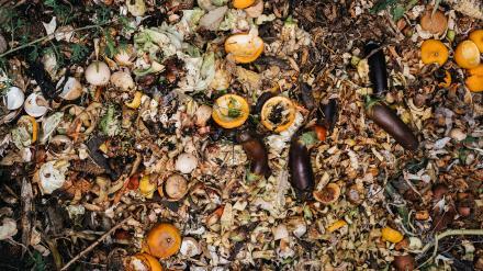 Ugens skrald: Affaldsvirksomhed bombarderes med klager1