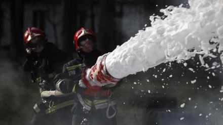Brandskum i mennesker og natur i Korsør: Lignende forureninger kan lure i resten af landet1